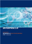 Executive Insights into Enterprise 2.0